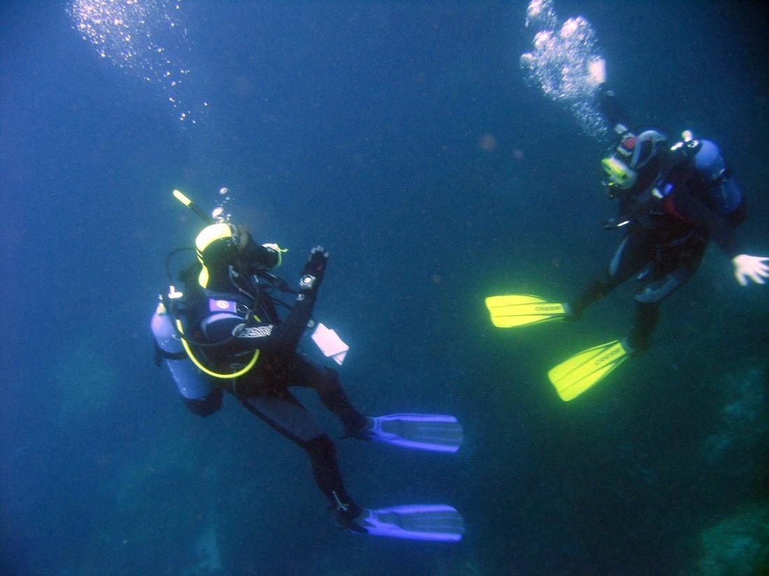 best scuba diving in punta cana